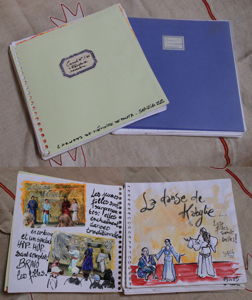 Les carnets de Soazig Dréano